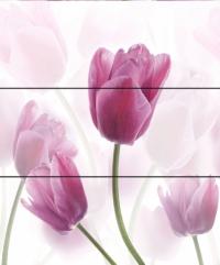 Cerrol Imperia Tulipa панно