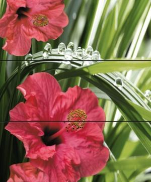 Cerrol Imperia Hibiscus панно