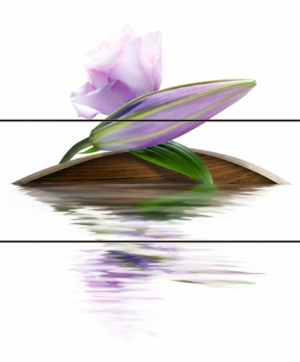 Cerrol Imperia Violetta панно