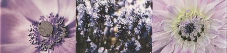 Tubadzin Maxima Violet 2 бордюр