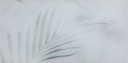 Paradyz Taiga Szklane A декор